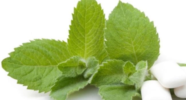 remedio para la tos mentol